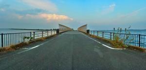 Watarase Retarding Basin 渡良瀬遊水地(谷中湖) 西橋
